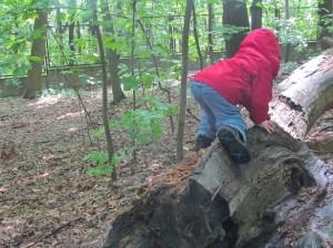 Mały zdobywca na spacerze w Lesie Bielanskim